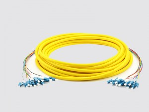 12 core LC patch cord