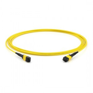 MPO Patch Cable